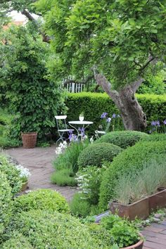 Great living wall creating a new garden room: 2 shapes of clipped hedges and the boxes of lavender . The garden of Ulla Molin, Sweden Back Gardens, Small Gardens, Outdoor Gardens, Garden Spaces, Shade Garden, Dream Garden, Garden Planning, Backyard Landscaping, Landscaping Ideas