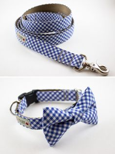 Matching leash and bow tie for your Best Dog.  From SillyBuddy on Etsy.  http://www.etsy.com/shop/SillyBuddy