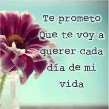 Te Prometo Que te voy querer cada dia de mi vida :)