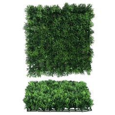 Pacific Silkscapes introduces a new line of boxwood wall mats used to create artificial garden walls. We can also apply to walls and outdoor structures. Artificial Plant Wall, Artificial Boxwood, Boxwood Garden, Ivy Wall, Outdoor Walls, Flower Wall, Indoor, Outdoor Structures, Green