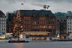 011_14176 - Weihnachten in Hamburg; der hohe lichtgeschmückte Tannenbaum schwimmt vor dem Alsterpavillon auf der