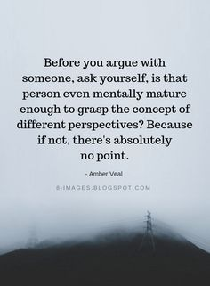Quotes Before you argue with someone, ask yourself, is that person even mentally mature enough to grasp the concept of different perspectives? Because if not, there's absolutely no point. - Amber Veal