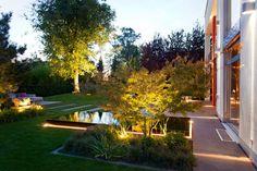 Licht, Garten, Pflanzen, Bodenbeleuchtung