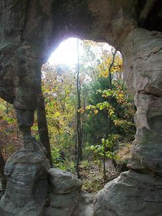 Pickle Springs, National Natural Landmark, Ste. Genevieve Co., Missouri. Often cited as being the best short hike in the state. The sandstone rock here has eroded to form various geological features. The cool box canyons, some of which never receive direct sunlight, harbor many plant and animal species which are glacial relicts. One, a crustacean known as an ampiphod, lives nowhere else. (The area is named after its first owner, Wm. Picklel, who emigrated from England in 1842.)