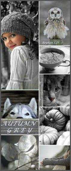 '' Autumn Grey '' by Reyhan S.D.