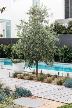 I advise more details on Waterwise Landscaping Backyard Pool Landscaping, Modern Landscaping, Front Yard Landscaping, Coastal Landscaping, Landscaping Design, Patio Design, Coastal Gardens, Beach Gardens, Outdoor Gardens