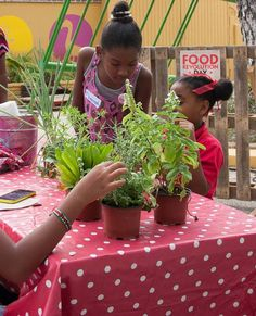Teaching the children about fresh herbs at the Food Revolution Day Curacao! #FoodRev #FoodRevolutionday #JamieOliver
