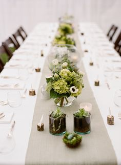 Centerpieces - a mix of terraria, round vases, and small glass cylinders filled with miniature orchids, succulents, golden moss, seeded eucalyptus, dusty miller, fennel, rosemary, hydrangea, anemones, hypericum berries and fennel.