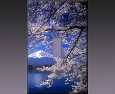 Light Switch Cover - Cherry Blossoms II