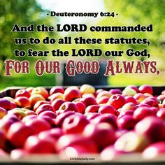 Bible Verses Kjv, Deuteronomy 6, Fear Of The Lord, God, Dios, Allah, The Lord