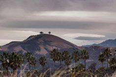 Two Trees, Ventura, CA Two Trees, I Love America, Santa Barbara, Mount Rainier, Childhood Memories, The Neighbourhood, Landscapes, Happiness, Study