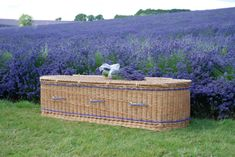 Each one of our wicker willow coffins has been beautifully and caringly hand woven by one of our skilled basked makers in our workshops in Somerset, making each coffin unique, special and a personal tribute to a loved one Funeral Planning, Funeral Ideas, Green Funeral, Burial Urns, Farm Business, Porch Lighting, Casket, Somerset, Coffin