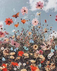 Blumen Bilder Spring Equinox hach so schön! The post Spring Equinox appeared first on Blumen ideen. Collage Foto, Art Du Collage, Photo Wall Collage, Flower Collage, Flower Art, Spring Aesthetic, Flower Aesthetic, Boho Aesthetic, Aesthetic Grunge
