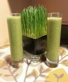 Fresh Wheatgrass Juice~