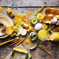 Philippa Stanton - Yellow