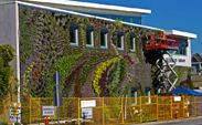 Installation of the largest vertical garden in North America, South Surrey, Canada. #SemaihmooSkyGarden