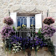 Hanging plants, and window boxes adorn this balcony window.