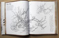Sketch Book for the Artist.Sarah Simblet
