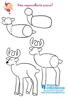 Hoe teken je een hert