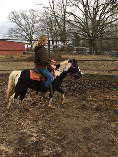 This is cloudy (the horse ) second ride