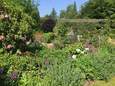 Runner Beans, Herbaceous Border, Obelisks, Architecture, Garden, Plants, Arquitetura, Garten, Lawn And Garden