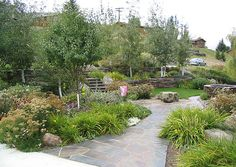 Xeriscape--walkway and lots of green