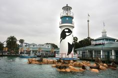 SeaWorld Orlando today introduced a new pass that allows you to bring a different guest every day.
