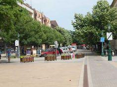 Centru Gyula Street View