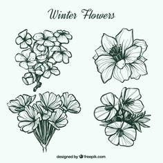 Bonitas flores de invierno dibujadas a mano Vector Gratis