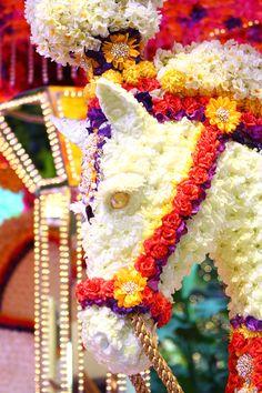Floral carousel at Wynn Las Vegas.