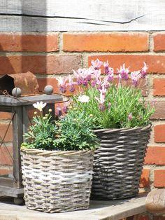 Koszyki wiklinowe z odrobina bieli - świetny dodatek do ogrodu lub balkonu w stylu skandynawskim.