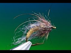 The weekend starts here! UV Caddis Pupa. | thefeatherbender