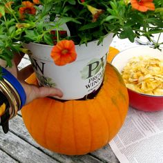 Fall porch decoration, I would use a fake one