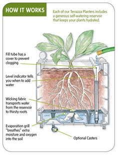 Self Watering Terrazza Trough Planters