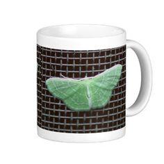 Moth, Mug.