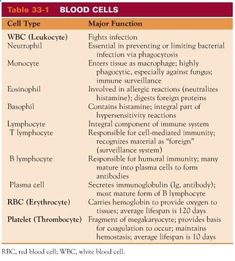 Blood Cell Chart: Red blood cells, platelets, plasma, white blood cells, and WBC differentials (various types of WBCs) #NurseHacks #Hematology #Nursing