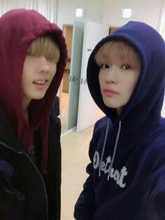 Mierda. AMO el Chensung PD: Jisung es re pelotudo pero asi lo amo a él tambien , ah :'v