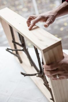 DIY Branch Shelf