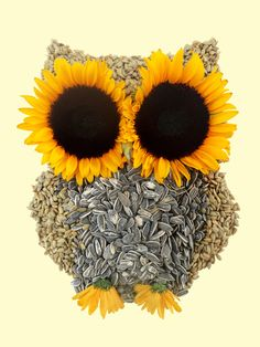 by Marco Angeles Owl and sunflower . Owl Always Love You, Owl Crafts, Owl Print, Cute Owl, Illustrations, Pet Birds, Flower Power, Artsy, Art Prints