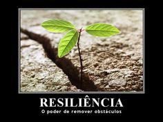 Dimensões do Sucesso: Sobre a Resiliência!