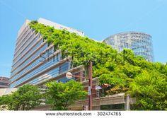 Ecology Stock Photography | Shutterstock