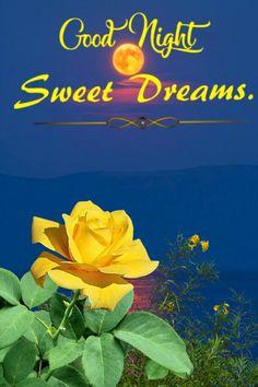 Good Night My Friend, Good Night Sweet Dreams, Good Night Image, Mary, Sleep, Box, People, Movie Posters, Movies