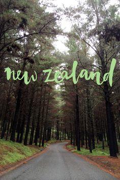New Zealand road trip www.apairandasparediy.com