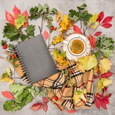 Autumn leaves book black coffee by LiliGraphie on @creativemarket
