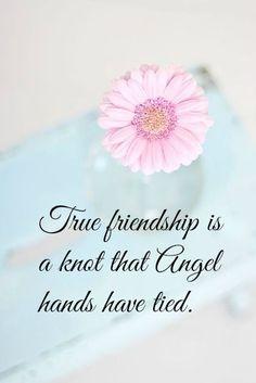 true friendship best friends sister friends true friends best friend quotes