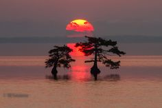 A Sunrise for Sunday