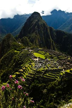 Machu Picchu. Been to Peru twice. I wish I could have gone here!! It's such a journey to get there from Lima, though.