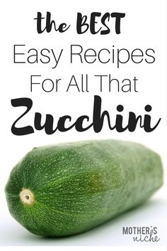 7 Simple and Easy Zucchini Recipes Best Zucchini Recipes- Both Meals AND Desserts! Here are some great zucchini recipes to use it all up, and one great tip for freezing zucchini. Fun Easy Recipes, Healthy Dessert Recipes, Clean Eating Recipes, Vegetable Recipes, Protein Recipes, Dinner Recipes, Lunch Recipes, Delicious Recipes, Bread Recipes