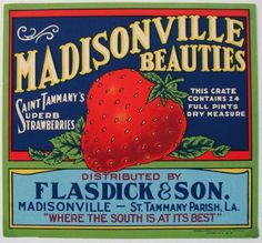 Vintage Can Labels - Madisonville Beauties Strawberries Vintage Jars, Vintage Labels, Vintage Paper, Vintage Posters, Vintage Prints, Veggie Art, Wpa Posters, Vegetable Crates, Vintage Metal Signs