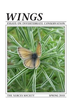 Xerces Society web site - LOTS of information about pollinators, plant lists, etc.